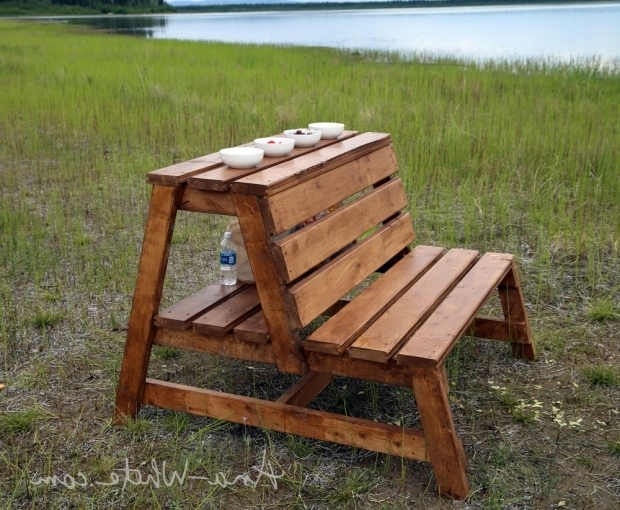 Remarkable Diy Fire Pit Bench Ana White Firepit Benches With Table And Storage Diy Projects